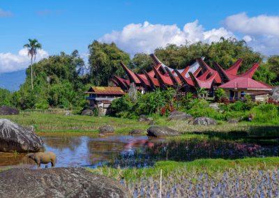 Indonésie départ Perpignan Clémenceau voyages Mont Ijen Java (35)